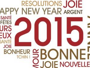 Les bonnes résolutions pour 2015 : comment tenir et dépasser vos objectifs?